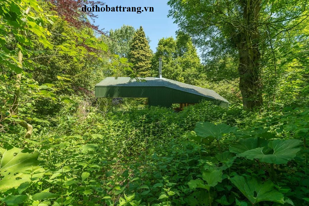 ngôi nhà cabin giữa rừng tuyệt đẹp 7