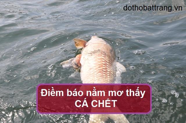 Nằm mơ thấy cá chết là điềm báo gì