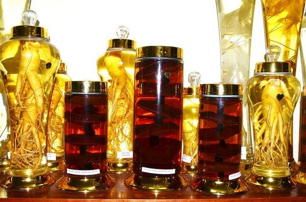 Bình ngâm rượu nấm linh chi mua ở đâu ?>>> BẢNG GIÁ