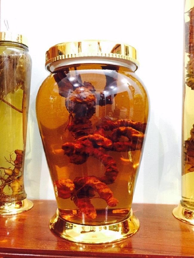 Bình ngâm rượu nấm linh chi bằng thủy tinh >> BẢNG GIÁ