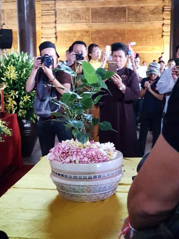 Chậu trồng cây Bồ Đề chính là chất liệu Gốm Sứ Bát Tràng men Rạn Giả Cổ, một trong những dòng gốm tiêu biểu của Việt Nam.