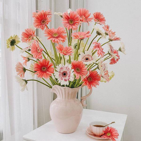 Mua bình cắm hoa Đồng Tiền trưng Tết